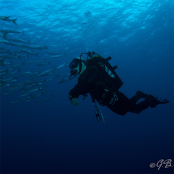 immersioni-di-avventura