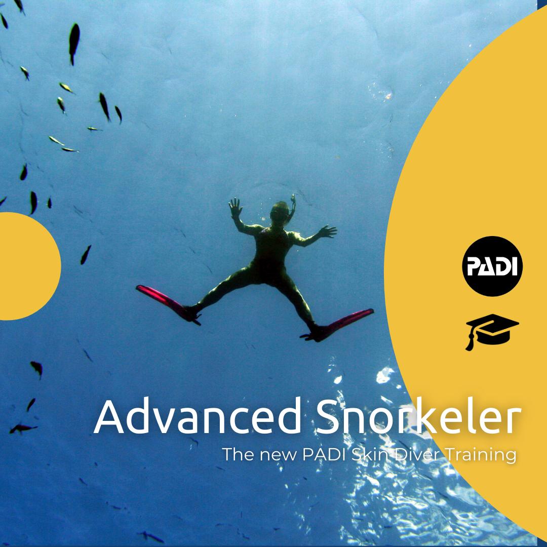 Skin Diver Advanced Snorkeler Course