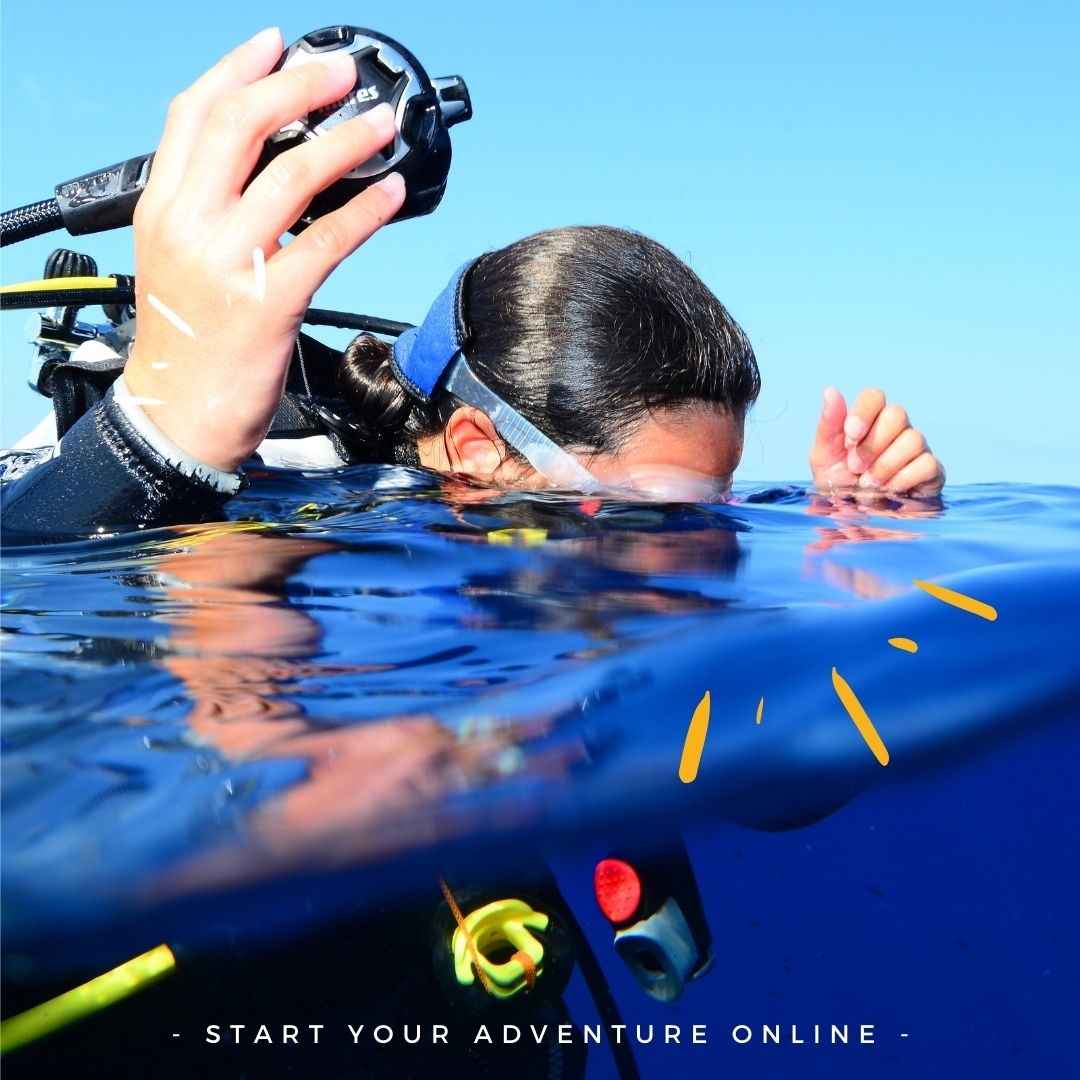 Online -  Free Intro Open Water Diver