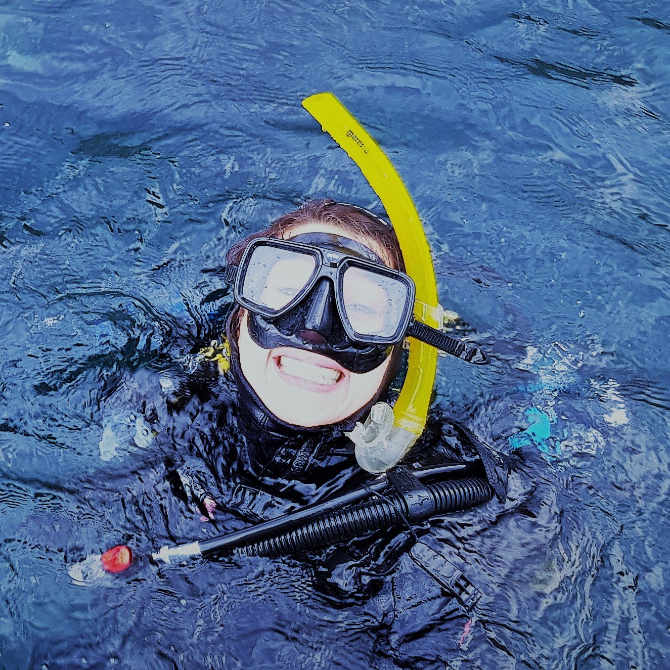 Openwater Diver