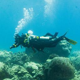 Online - Enriched Air Diver