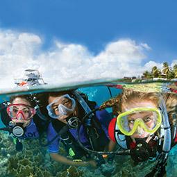 Online - Open Water Diver